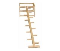 Лестница с боковыми перекладинами